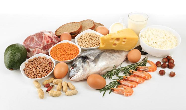 Alimentos mais ricos em proteína