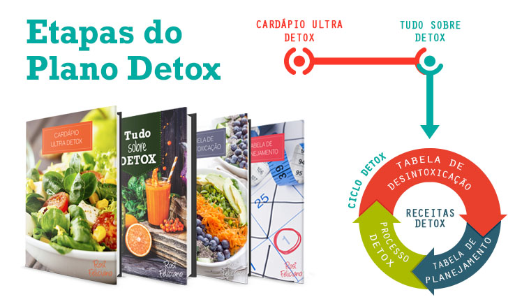 etapas-do-ciclo-detox