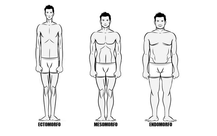 Tipos físicos
