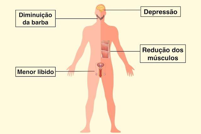 A próstata influi em uma potência