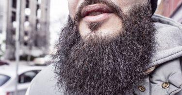 Pogonofobia: Medo de barba