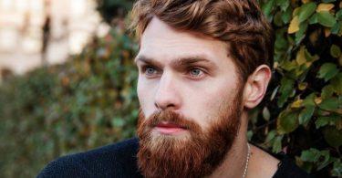 Barba fechada